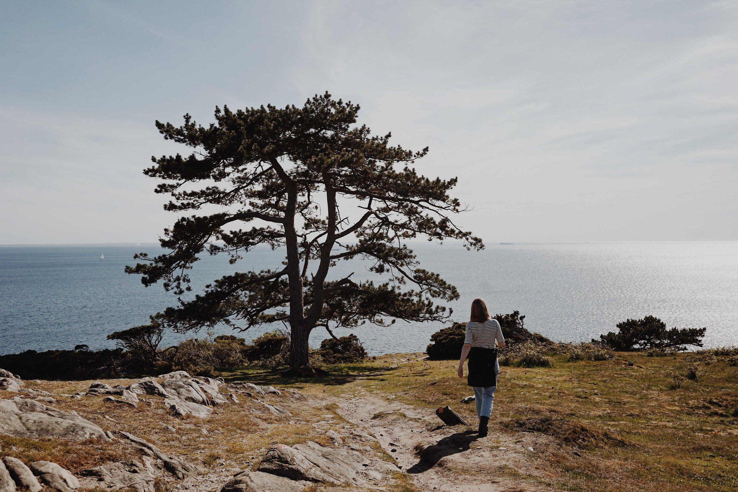 ASROSENVINGE_VisitSkane_Sweden_Molle_Kullaberg_Hiking_LowRes-110.jpg
