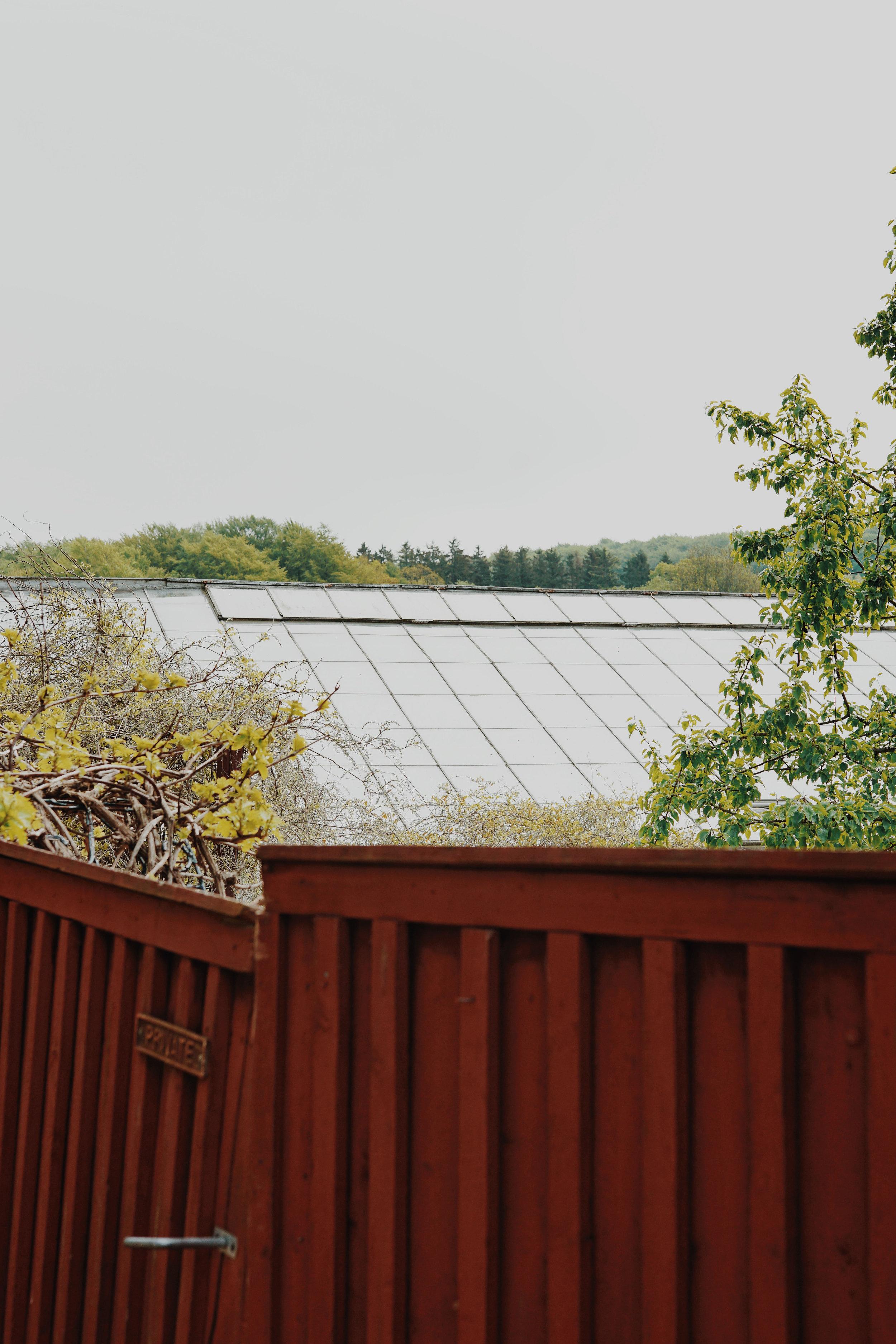 ASROSENVINGE_VisitSkane_Sweden_Backdalens_Handelstradgard_Greenhouse_Orangerie_LowRes-154.jpg