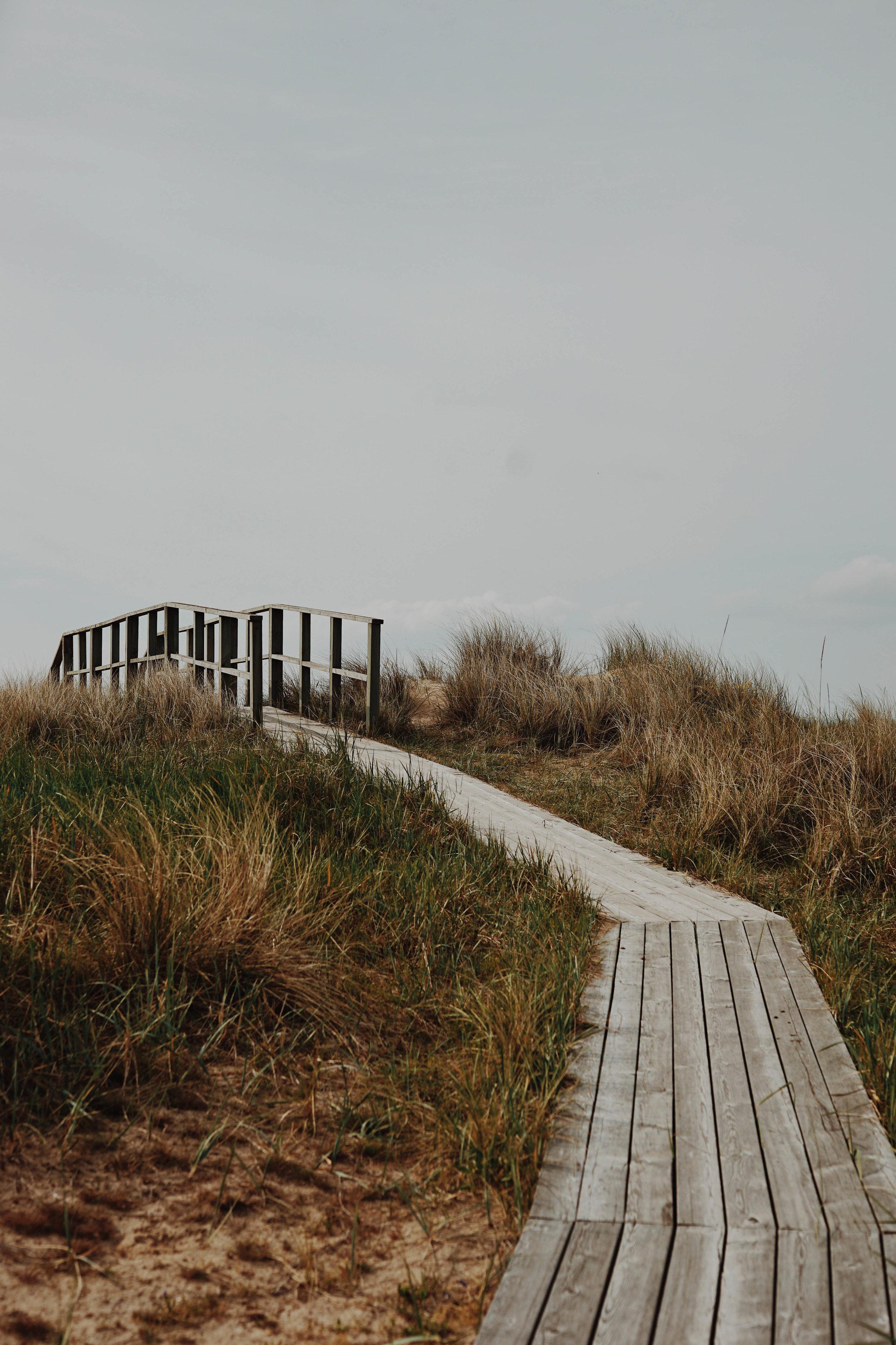 ASROSENVINGE_VisitSkane_Sweden_Vejbystrand_Countryside_Pathway_Boardwalk_LowRes-177.jpg