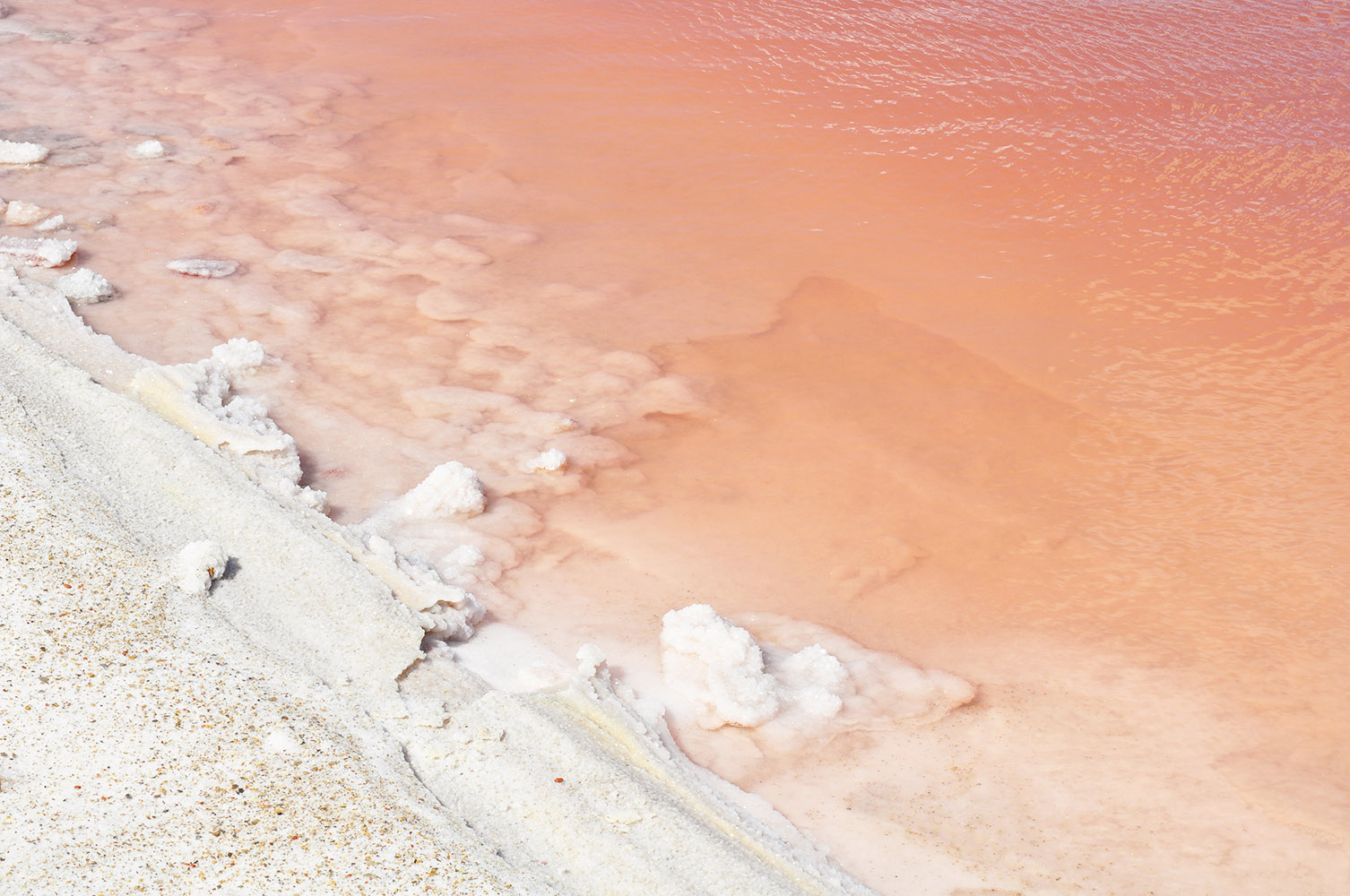 Salt fields  and red Algae in Salin de Giraud, part of  Karlijn Sibbel's continuing research and current workshops.