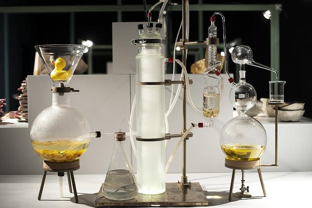 A Biobased Wunderkammer (Cabinet of Curiosities) as part of BioArt Laboratories'exhibit at Dutch Design Week 2015