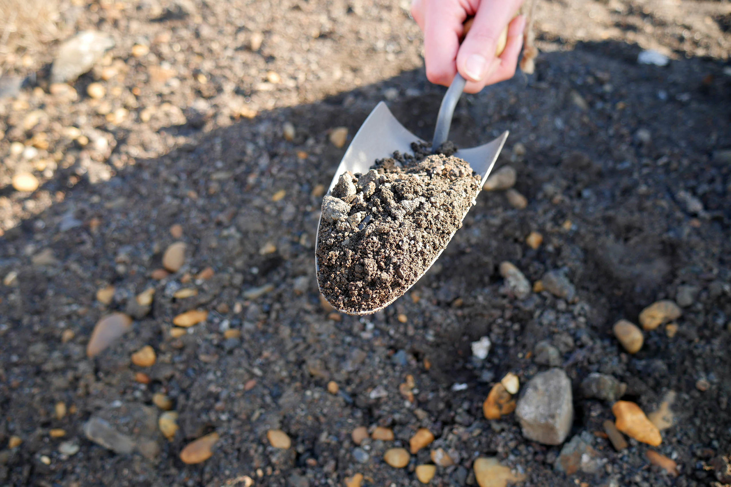 Collecting polluted soil samples near a Zinc factory in South Holland,  Ignorance is Bliss , by Agne Kucerenkaite