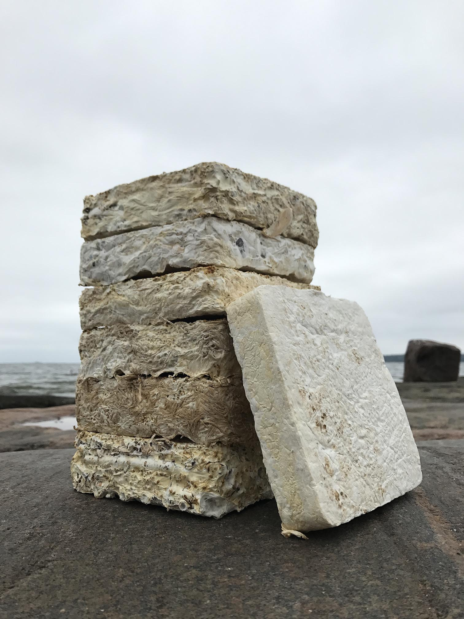 At the Forefront of Sustainability - Mycelium bricks from Biohm