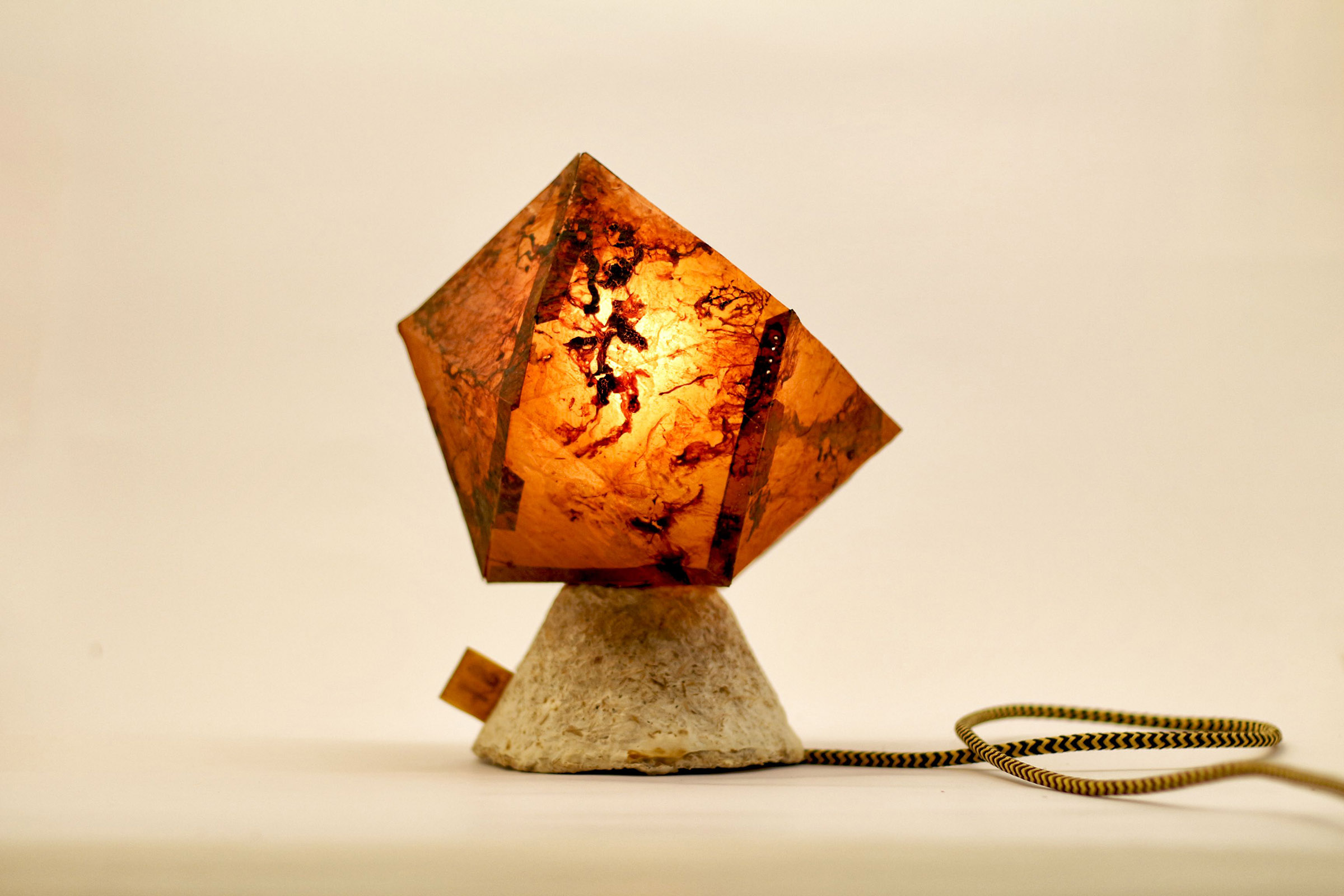 Idea Lamp, From the  Grown Objects  Collection by Silvio Tinello