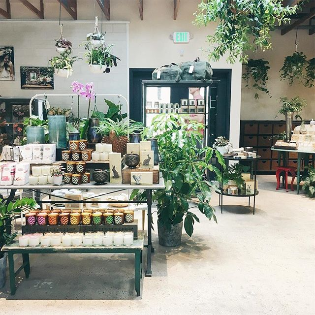 Had the privilege of touring @vaultandvine.co for their soft open! My heart was all aflutter seeing the shop, design-your-own bouquet offerings, cafe, outdoor seating, and greenhouse. Yes. All of those things. So many heart eyes. Congrats, Peicha and team, on the beautiful new space!!