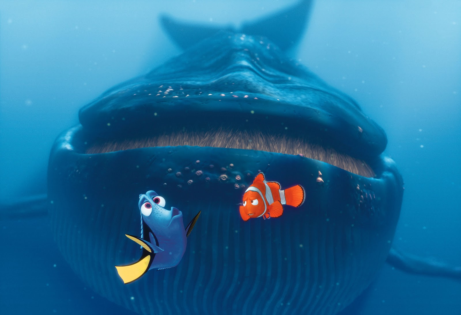 Ellen DeGeneres voices Dory and Albert Brooks voices Marlin in Andrew Stanton's  Finding Nemo
