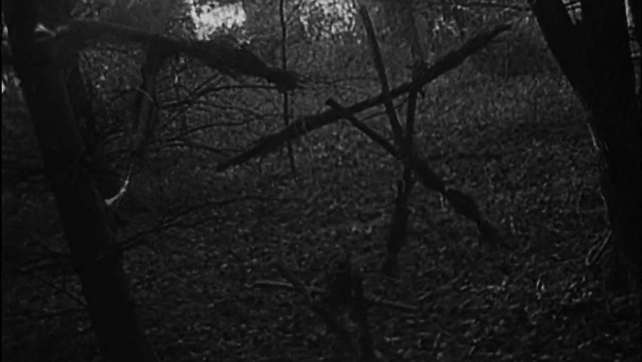 =20. The Blair Witch Project