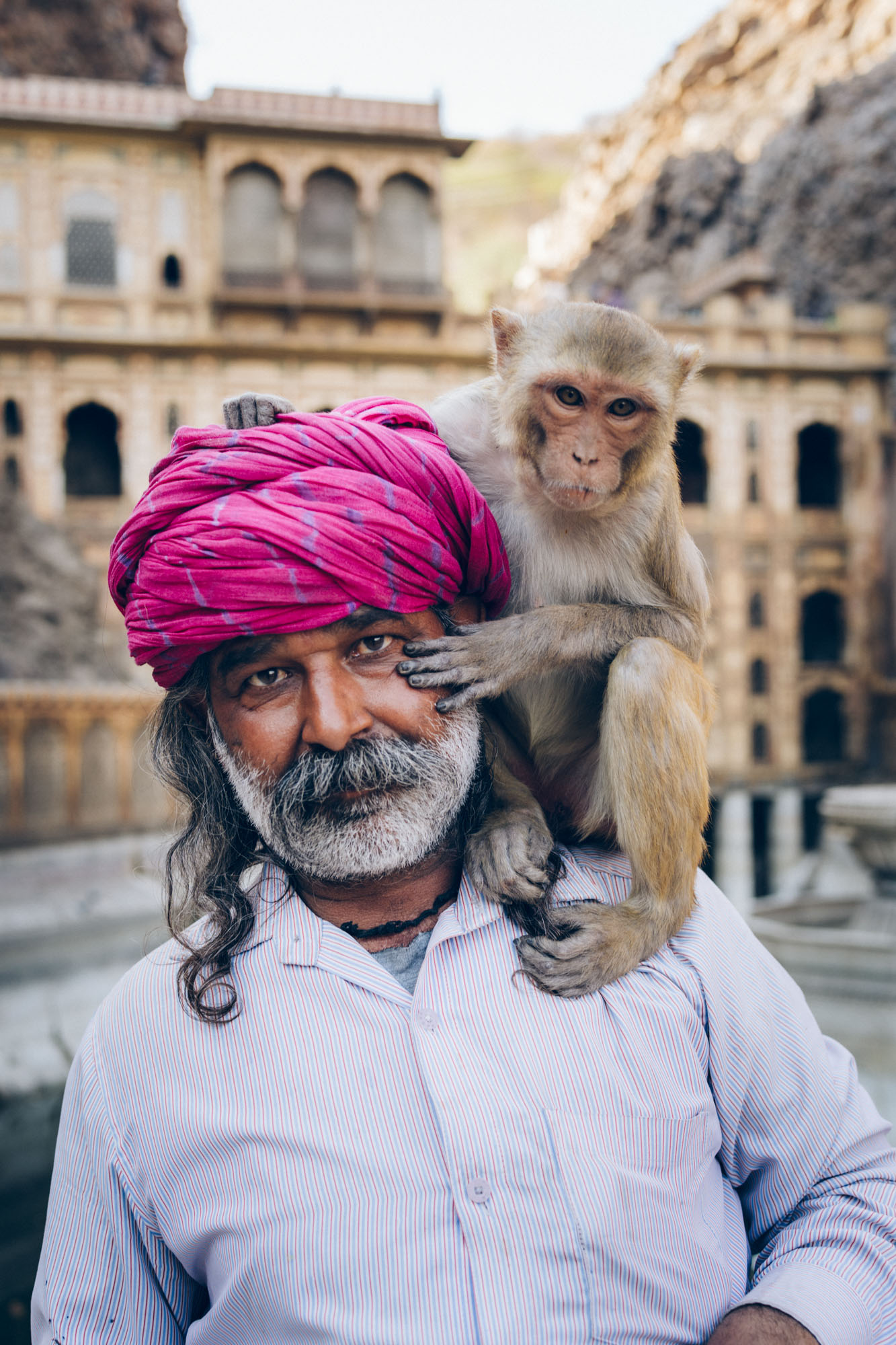 Monkey king-3.jpg