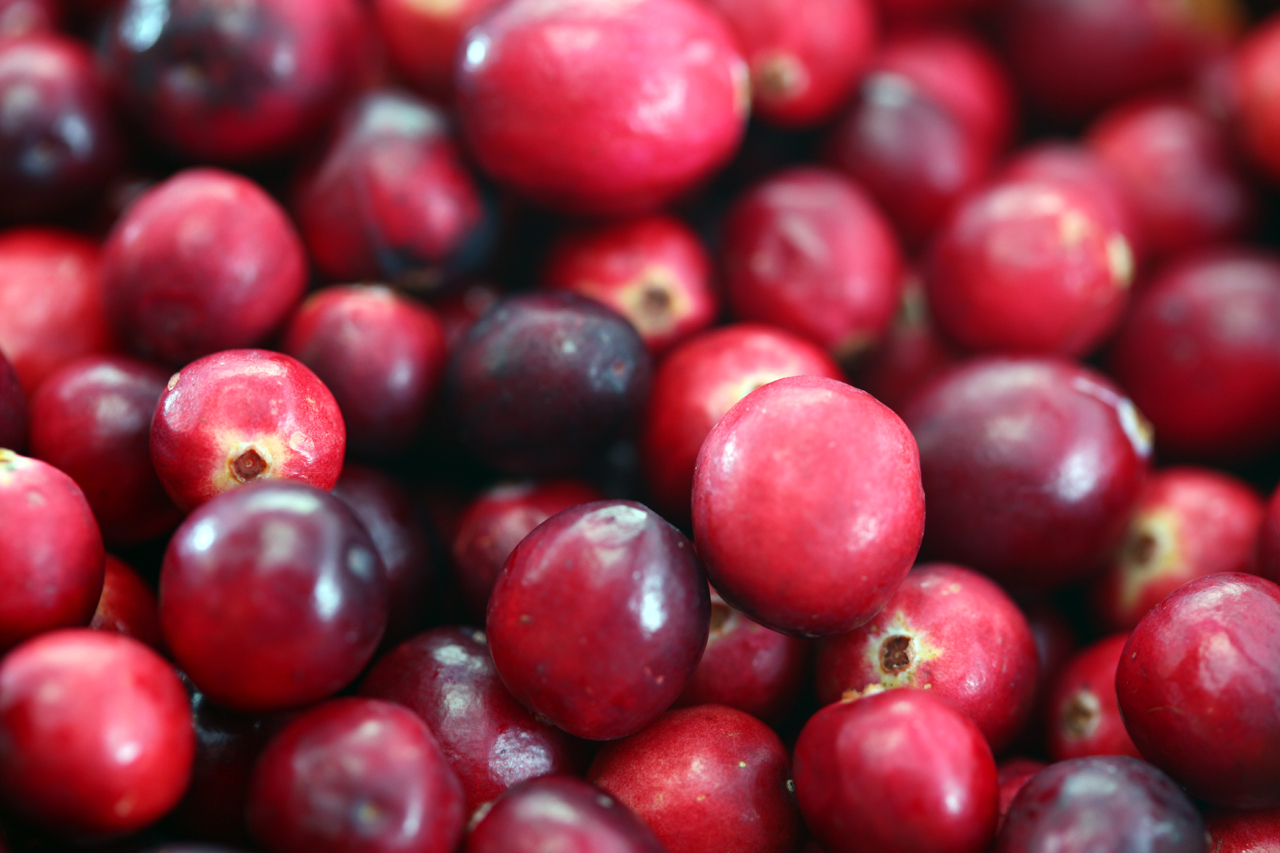 Cranberries. One of nature's remedies for UTI.