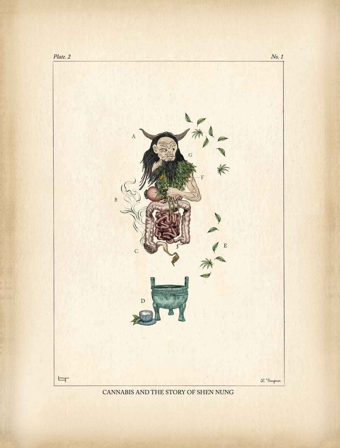 Cannabis and the Story of Shen Nung