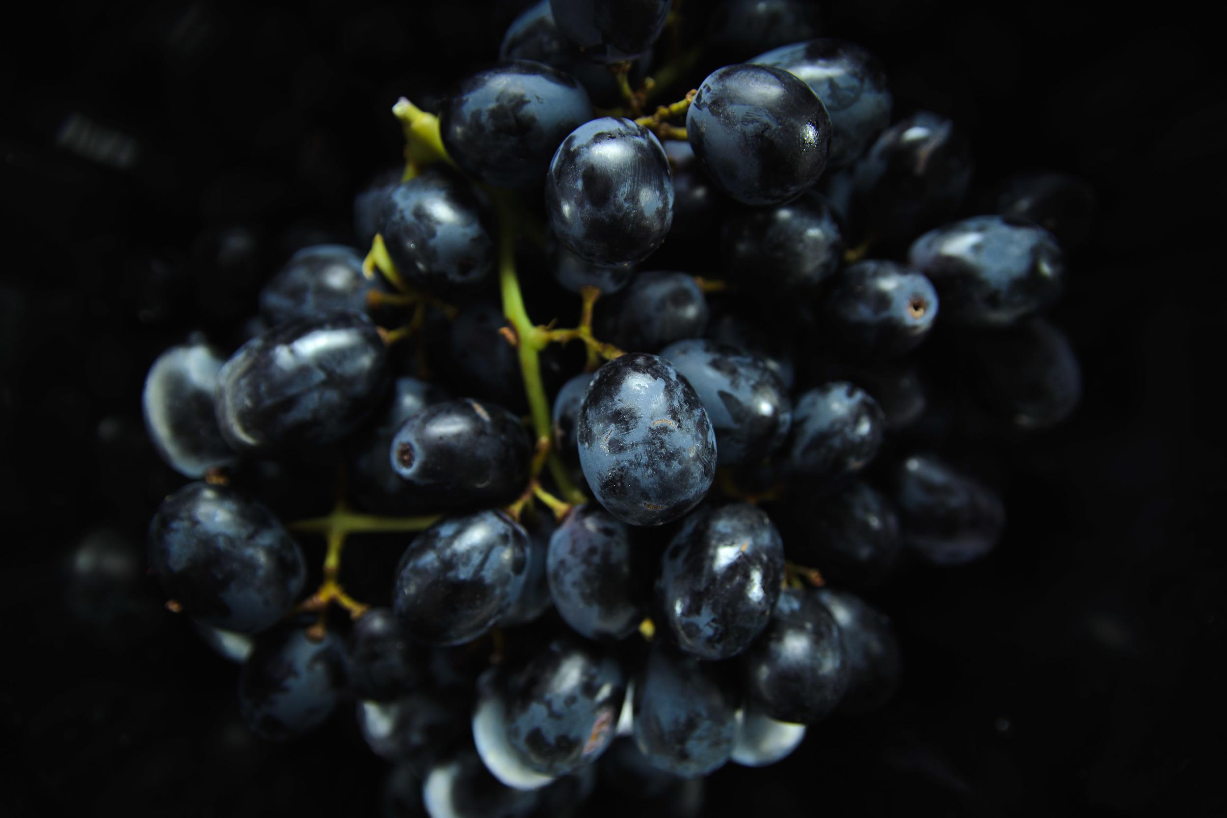 Grapes_1.jpg