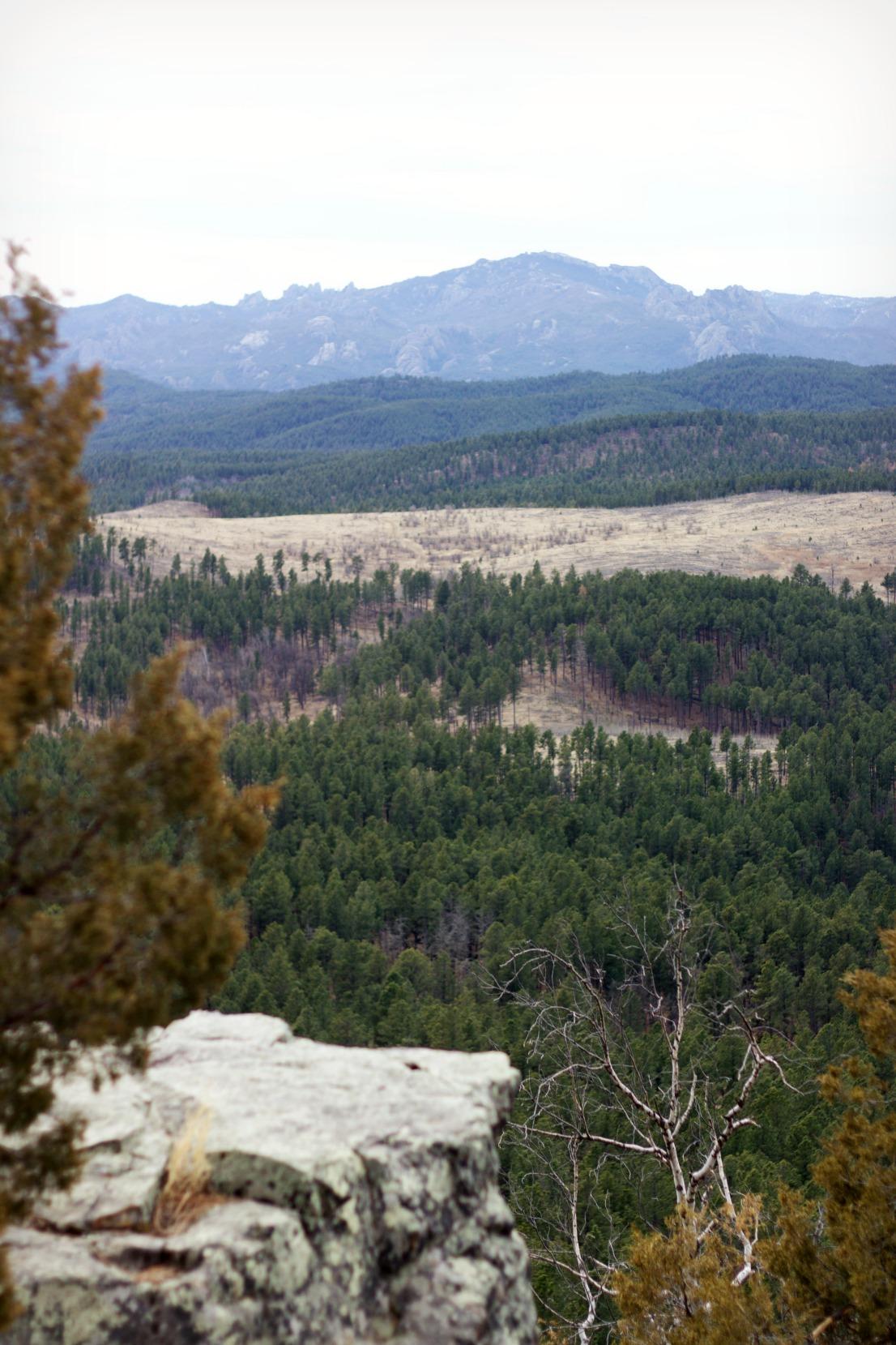 boulder hill1.jpg