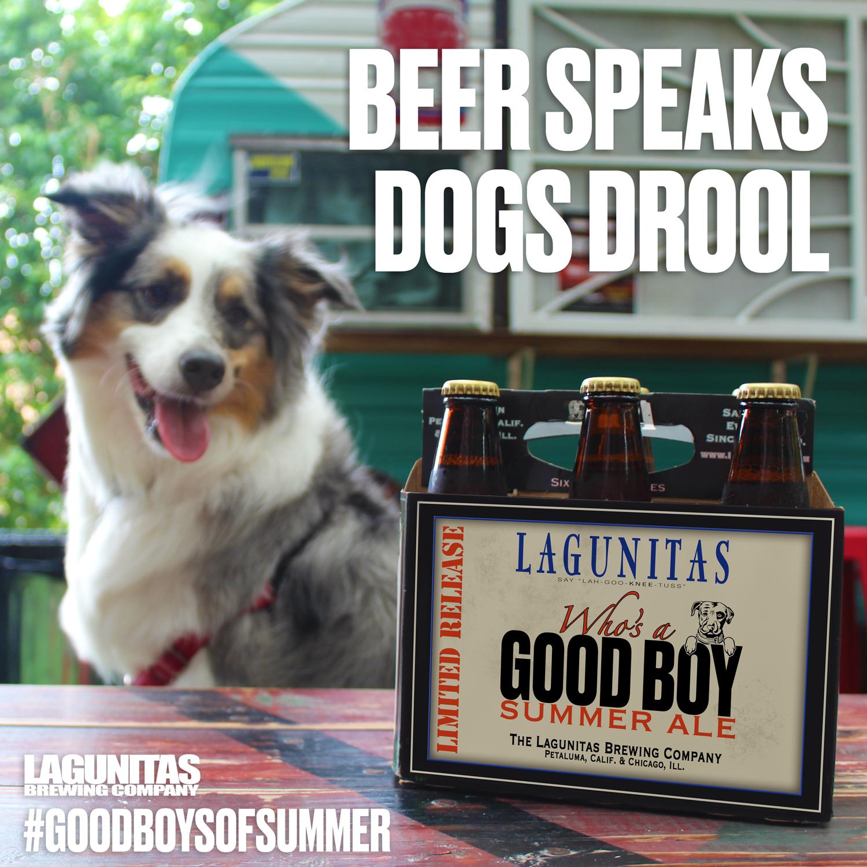 ILLINOIS /& Petaluma Beer STICKER ~ LAGUNITAS Brewing ~ Chicago CALIFORNIA; DOG