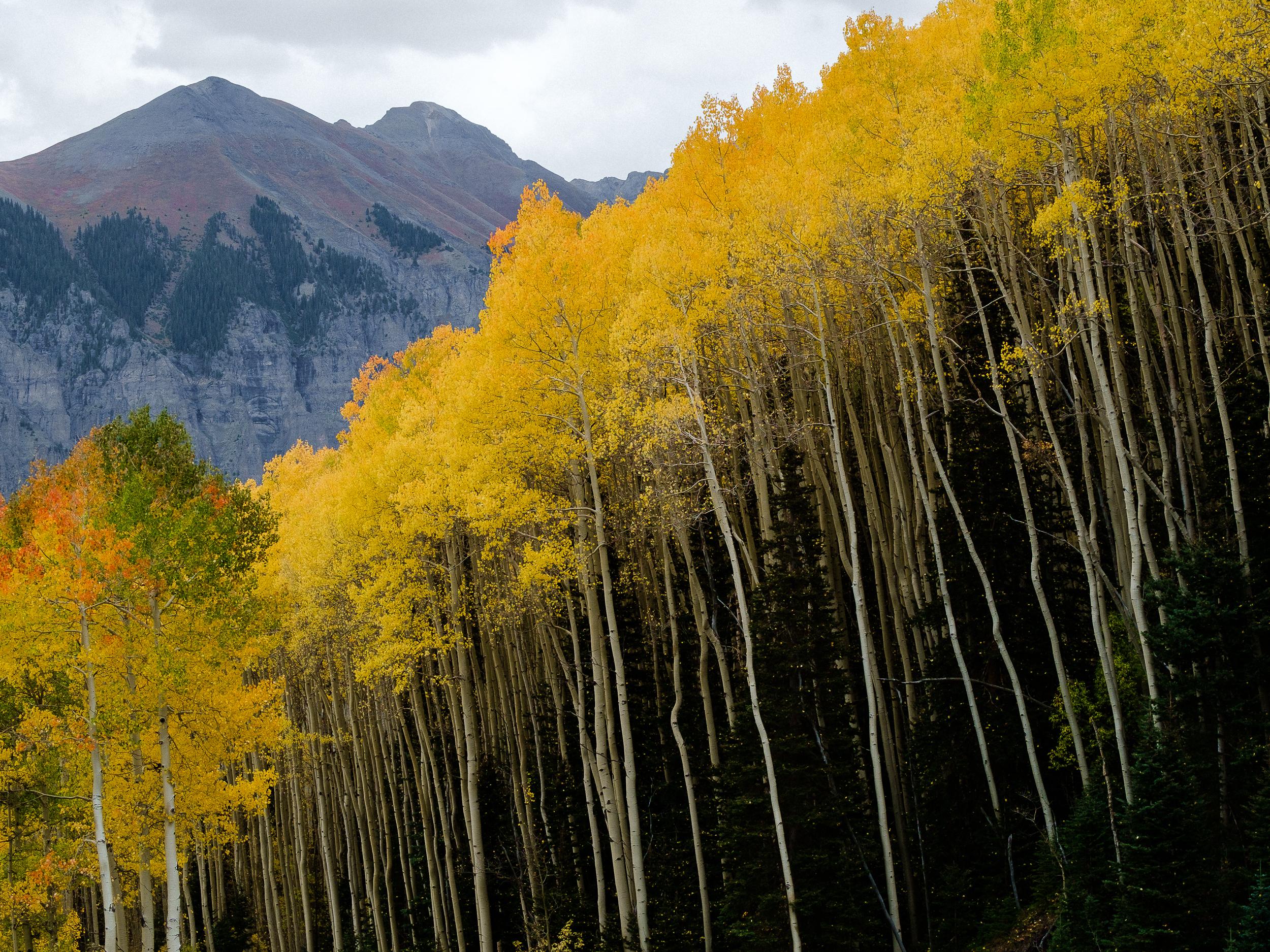 _ROB5653_Colorado.jpg