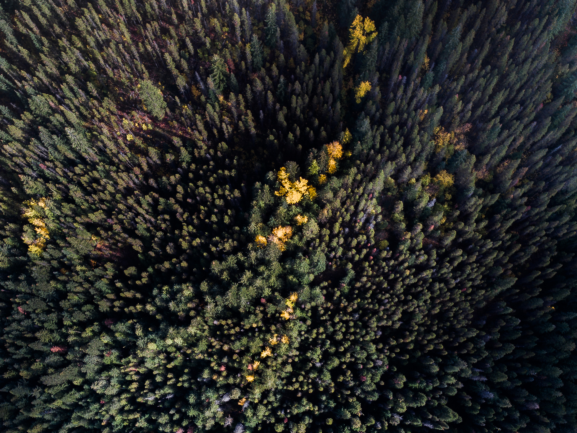 DJI_0012_Enchantments.jpg