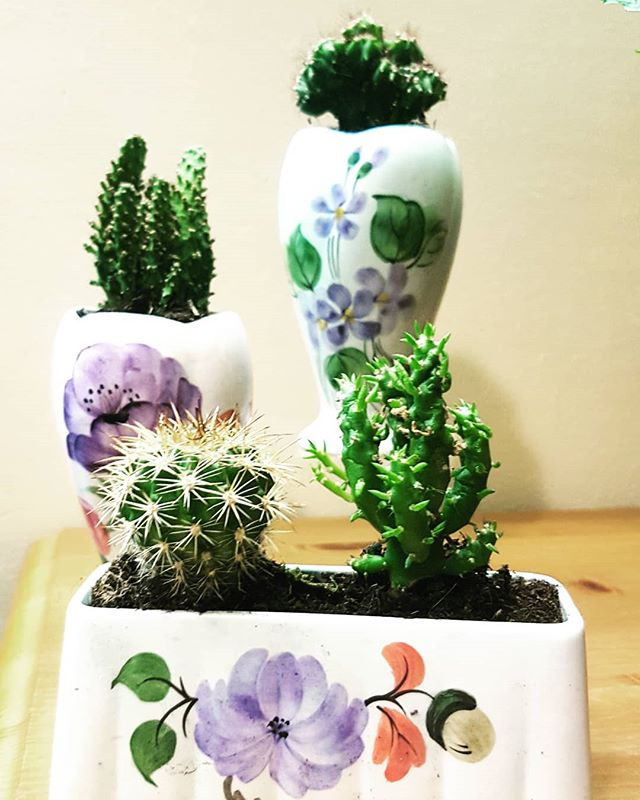Cacti planted in some very pretty pre loved ceramics. Love bringing these alive with cacti. #cacti #vintage #inspired #preloved #pretty #lifestyle #succulentlove #cactuslove #walthamstowparents #walthamforest #E17 #London #welovemarkets