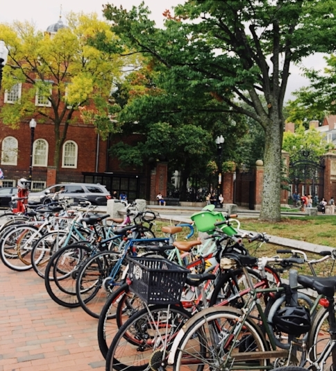 Harvard Square in Cambridge. Feeling your Gilmore Girls fantasy yet?  Sarah Teskova.