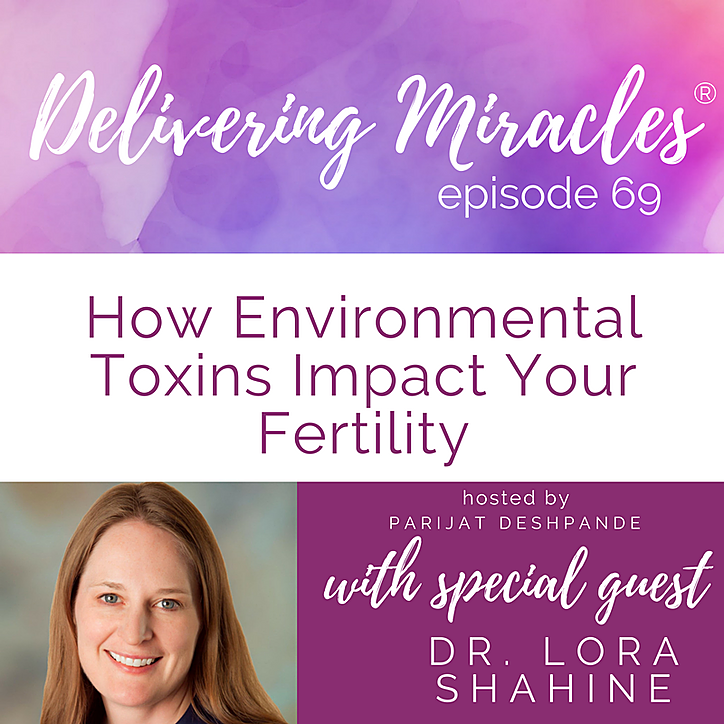 Interview on the impact of toxins on fertility and miscarriage risk