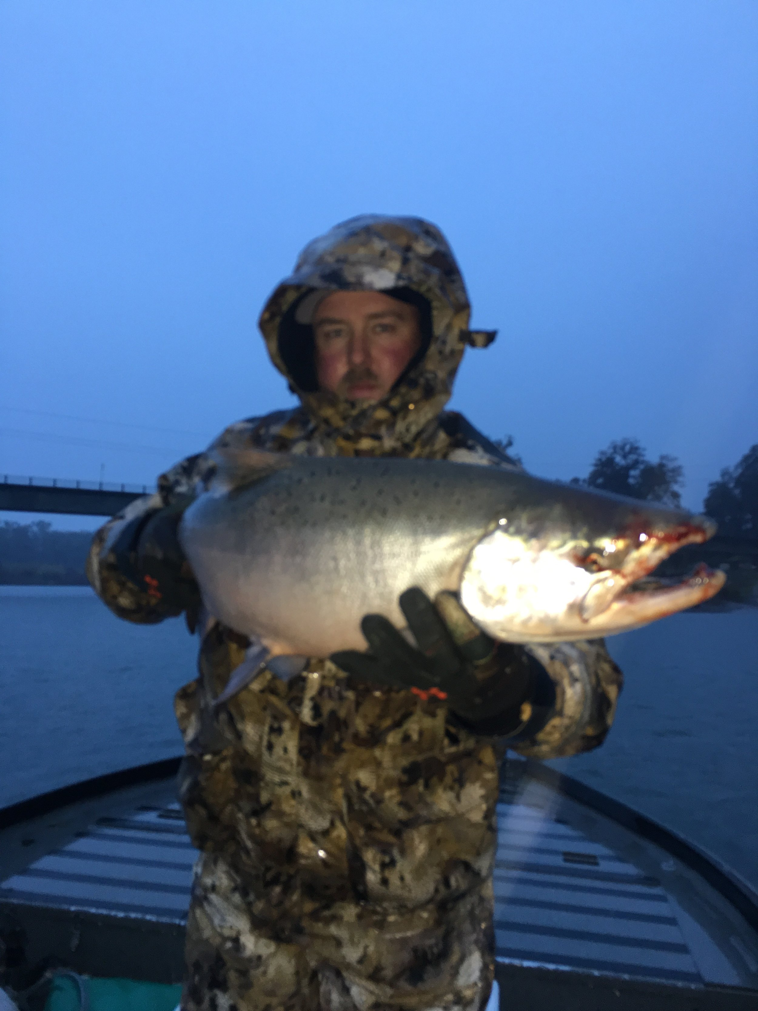 Adam Benoit from Vacaville, Ca hold a 18 pound Late Fall Run buck Chinook Salmon he caught with  SalmonSacRiver.com salmon fishing guide Mike Rasmussen on November 19, 2016 on the first pass of the morning on the Sacramento River at Woodson Bridge near Corning, Ca.