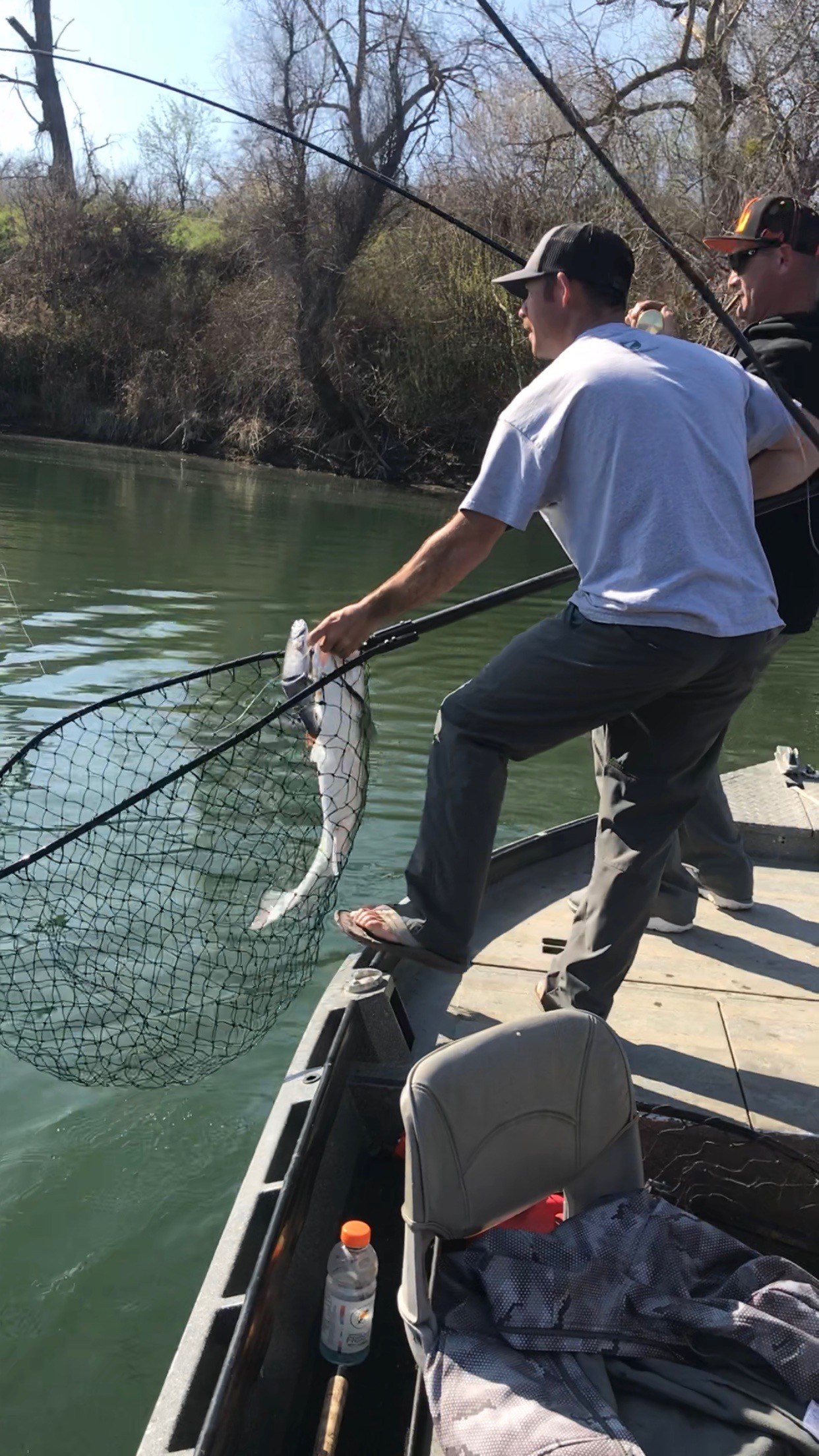 Fishing Guide John Pearl holds his end of a double header as he prepares to net a 44 pound striped bass friend and fishing partner Gary Collins has on his end of the double header. Both fish were landed bringing the total of stripers caught on their trip to four trophy striped bass.
