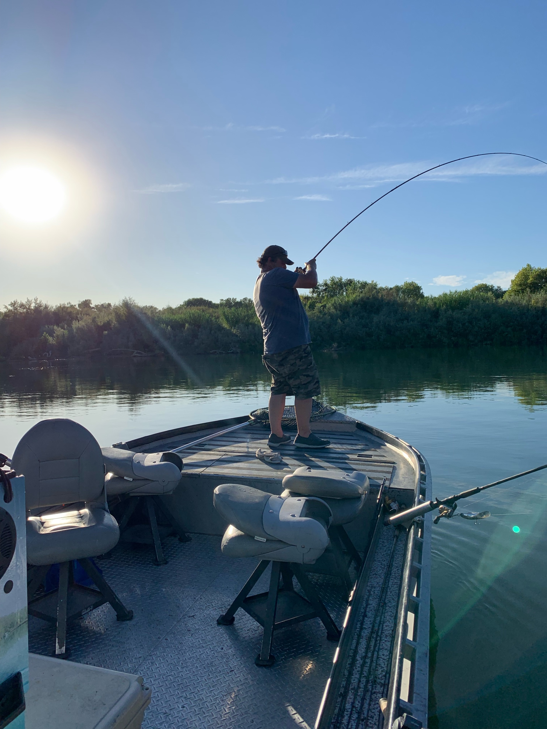 This guest of Mike's Guide Service battles a 27 pound king salmon he caught while back bouncing cured salmon roe on the Sacramento River at Woodson Bridge. His Phenix Rod Co. 9.5ft casting rod is bent over on a afternoon salmon fishing trip on September 4, 2019.