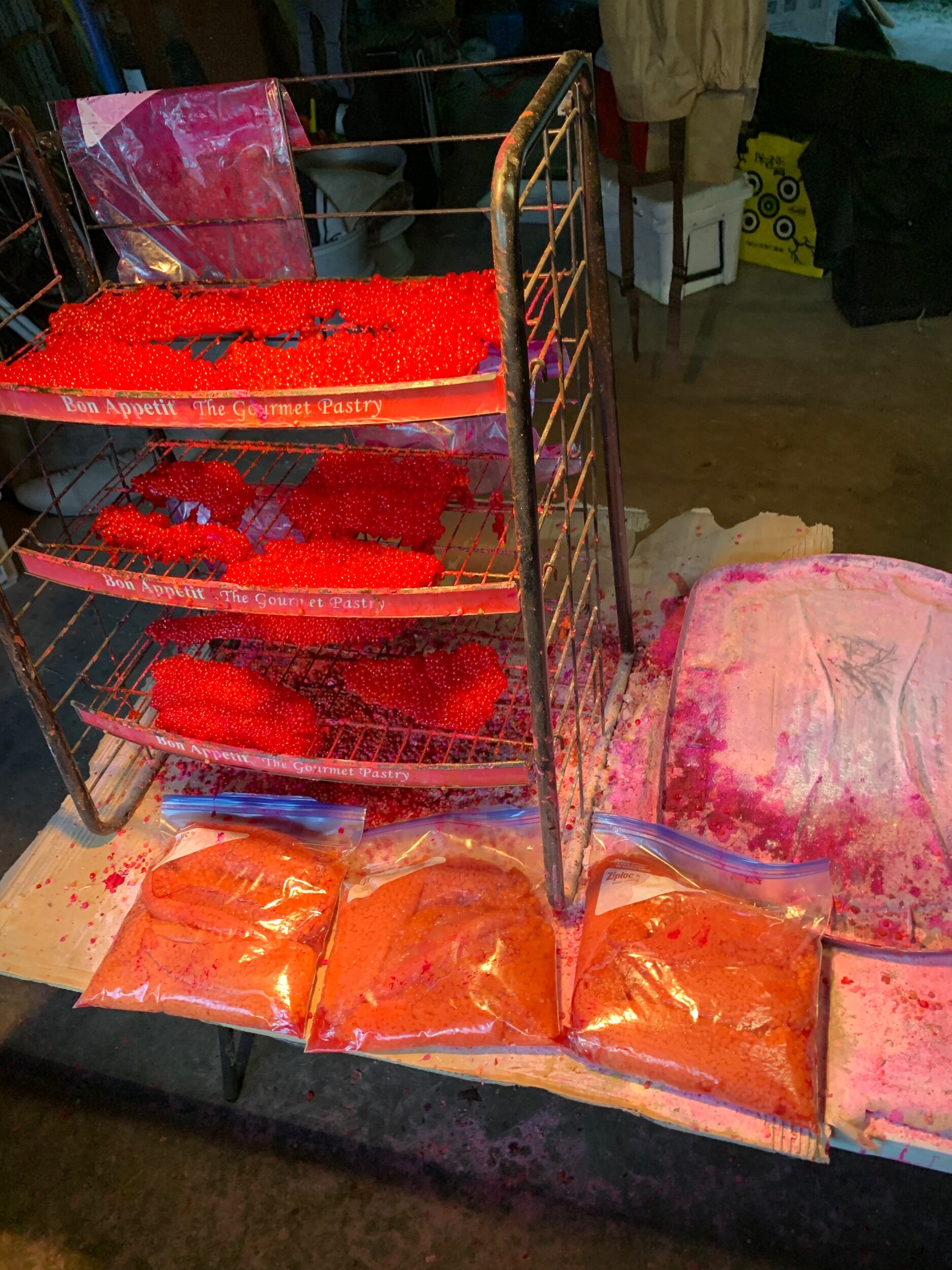 A photograph of the curing of salmon roe for bait. To be used on future salmon fishing trips.