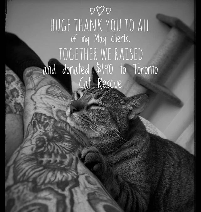 Huge thank you to all of my May clients and @canadahelps . $190.00 went to @torontocatrescu to help the spay/neutering program. I can't wait to see how we do next month!  #news #market #tattoo #tattoos #city #love #lovetoronto #blackandwhite #model #beautiful #cute  #best #tattoolife #tattooist #liveauthentic #foodbloggers #cutetattoo #toronto #butfirstcoffee #summer #lifestyleblogger #catrescue #cats #donate #support #supportlocal @inkandwatertattoo
