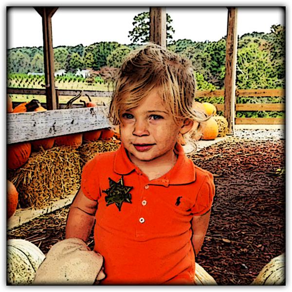 Pumpkin Patch 600.JPG