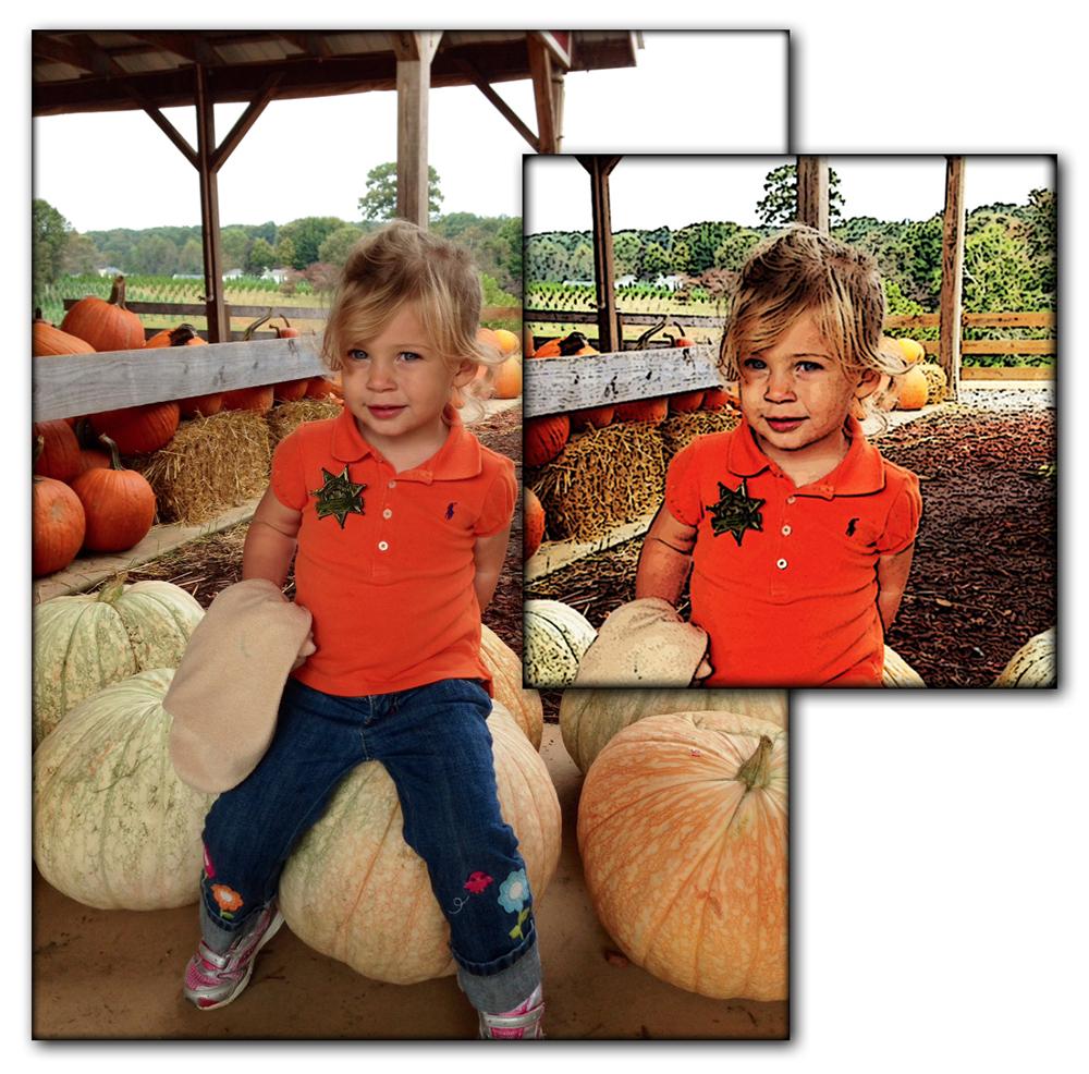 Pumpkin Patch Two.JPG