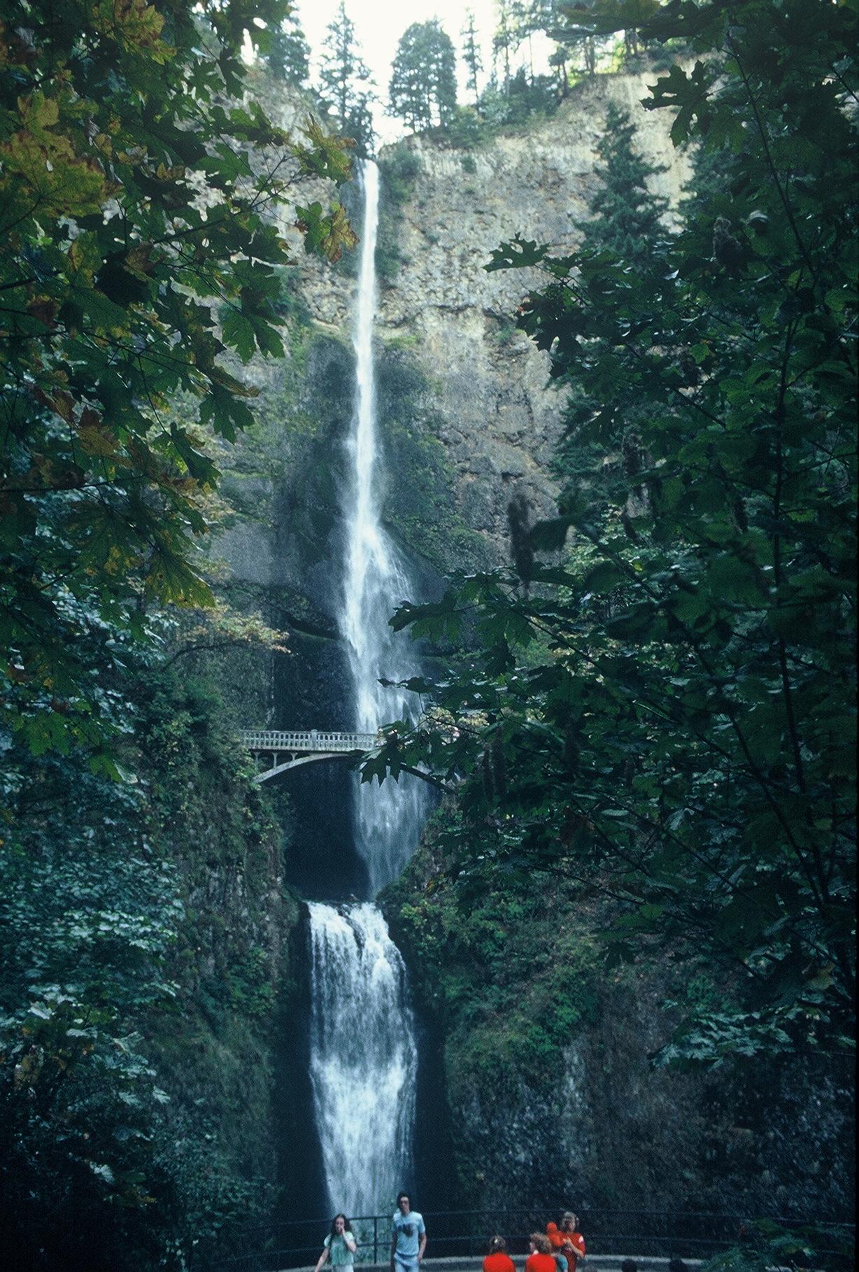 Multnomah Falls  Color Photograph Copyright Major Morris