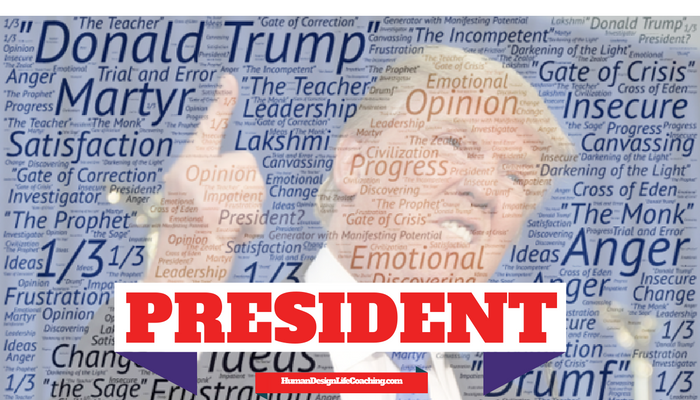 45th-president-donald-trump-career-design