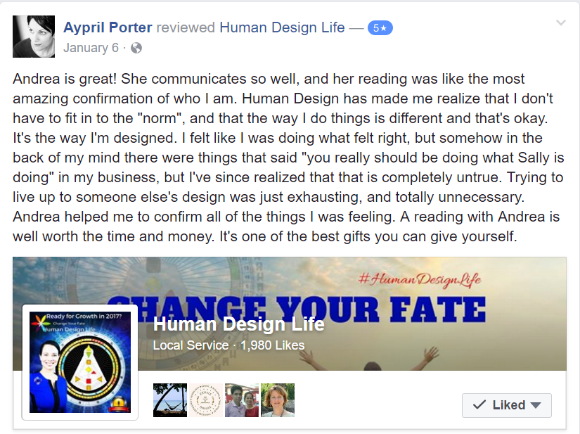 Human Design System Review
