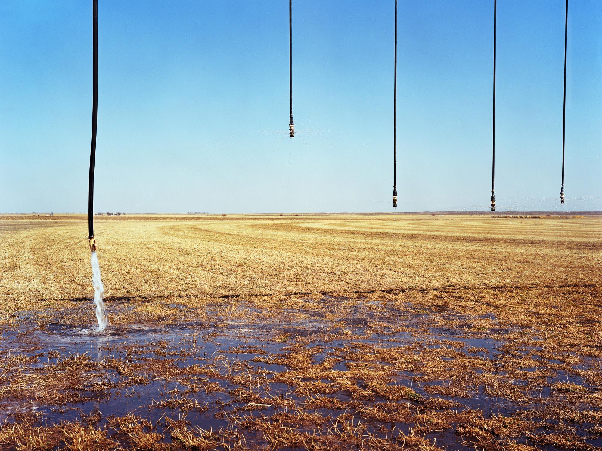 Lust_Dianna_Pivot Irrigation.jpg