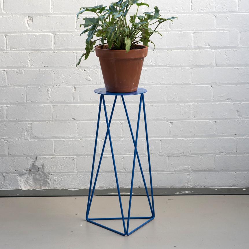 High Tri_Plate_Blue_Plant.jpg