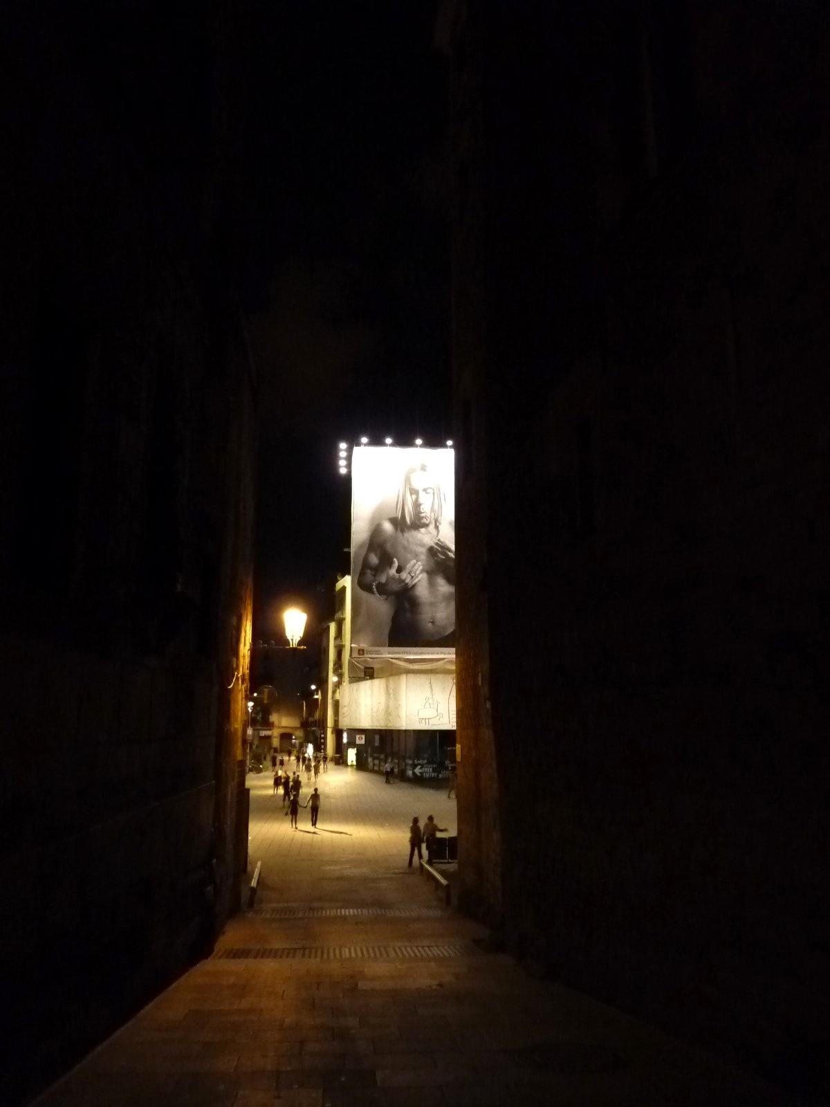 Barcelona-Iggy-Pop-.jpg
