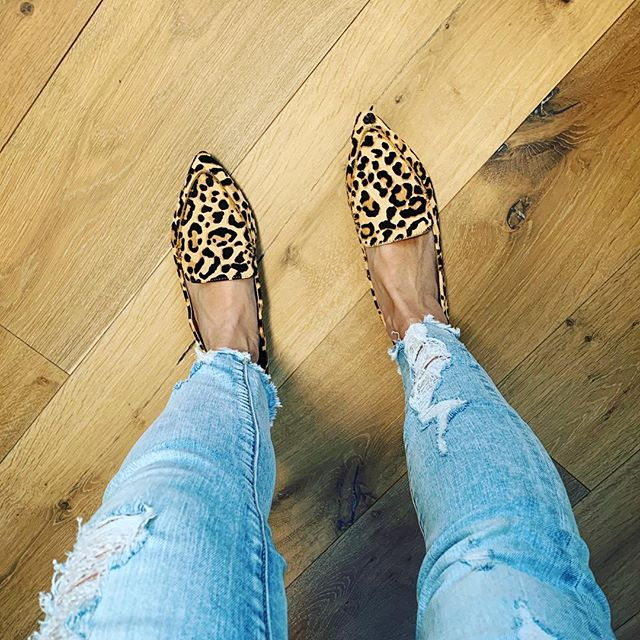 Lazy Sunday is in full effect. If you need some sassy flats, check these out. They are on my Favorites list. Link in bio. #momblogger #ontheblog #outfitdiaries #mommyblogger #blogpost #momstyle #shoes #shoe #flats #leopardprint #leopard #colorpoplife #ootd #ootdfashion #weekend #weekendvibes #shoeaddict #mystyle #casualstyle #casualoutfit #casual #workstyle #comfy #comfyshoes #stevemadden