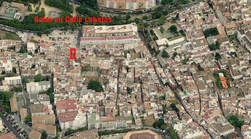 Lobatas-8 Captura ubicacion 1 (Small).jpg