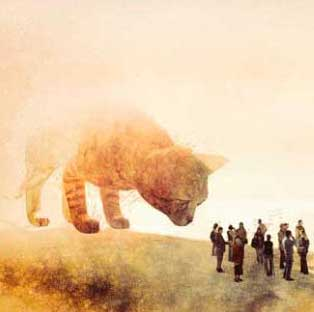 footer-cat.jpg