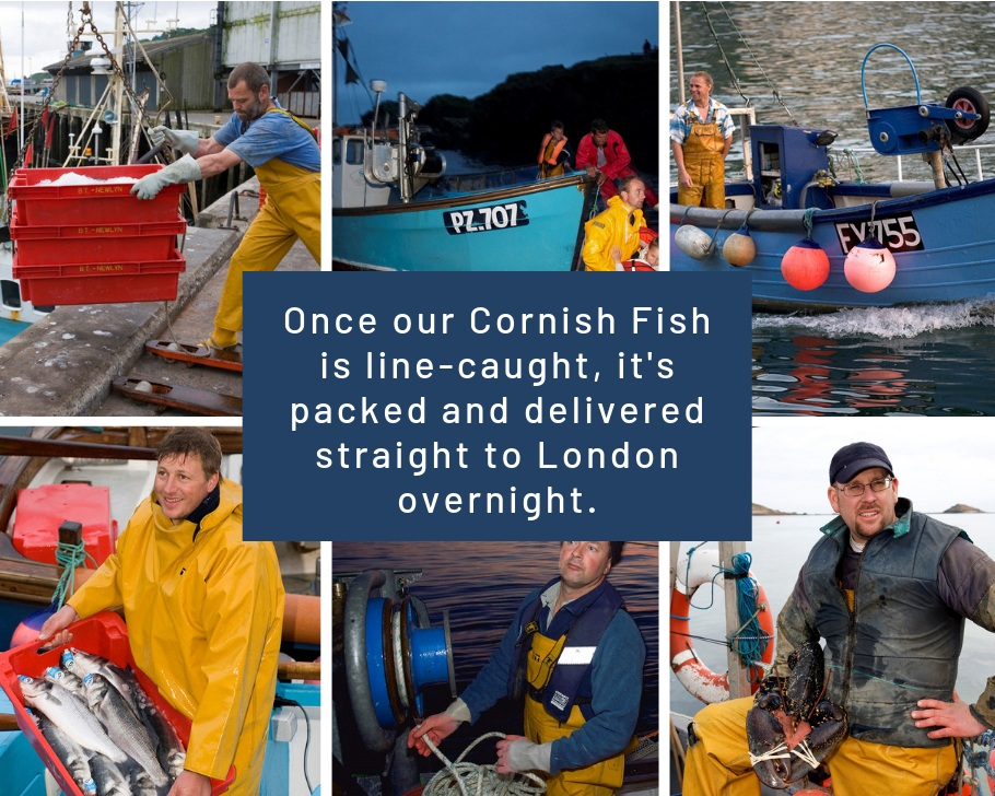 Once our Cornish Fish is line-caught, it's packed and delivered straight to London overnight.