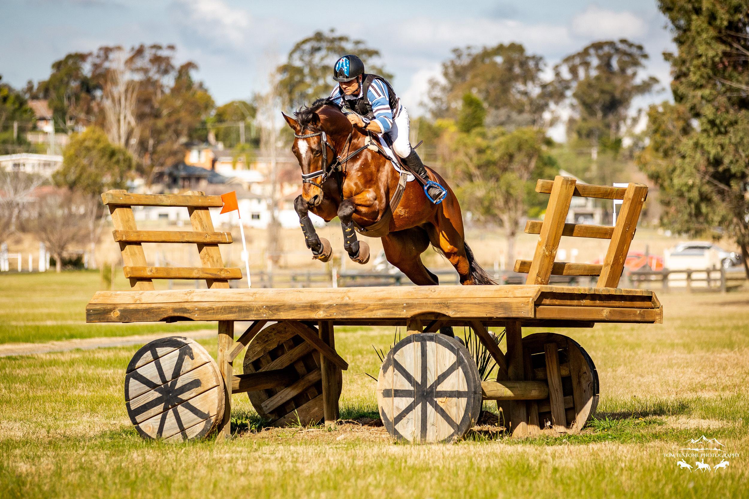 Equestriad August 2019