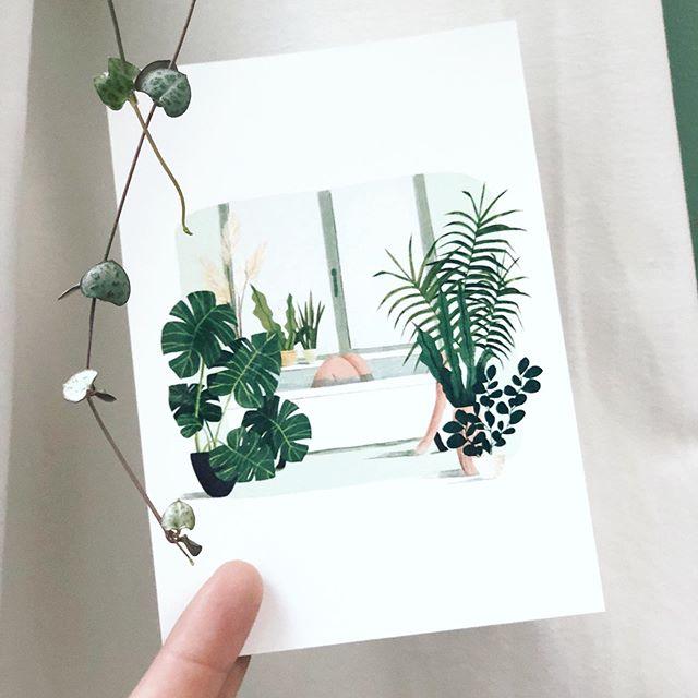 💌 Yess new batch of postcards arrived . . . #digitalart #doodleaday #plants #interior #houseplants #bathroom #bathing #relax #digitaldrawing #kinderillustratie #illustration #sketchbook #ipadpro #characterdesign #procreate #moreillustrations #lauramuls #kinderillustraties #illustrationNow