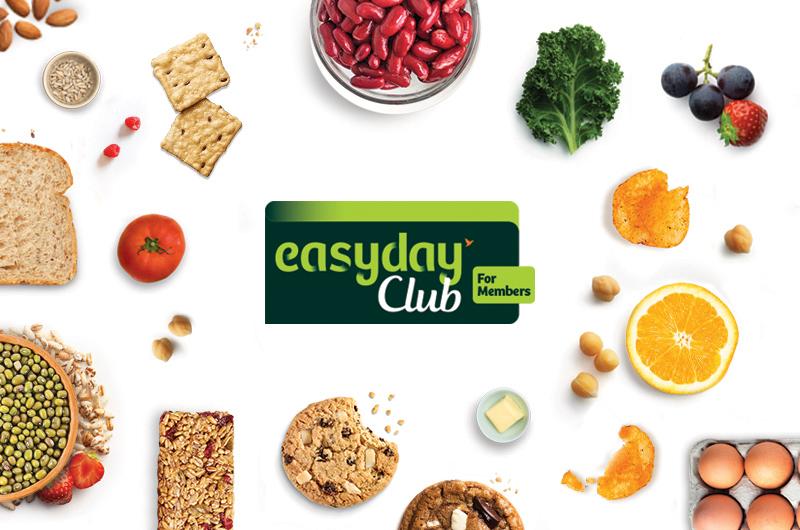 EasyDay_Branding_Elephant Design 1.jpg