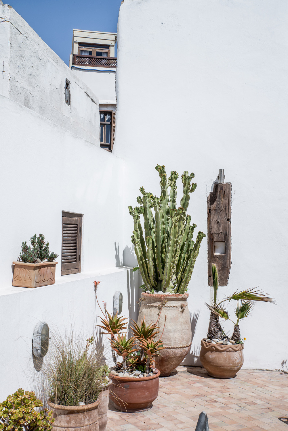 moroccan patio terrace suntrap with selection of plants