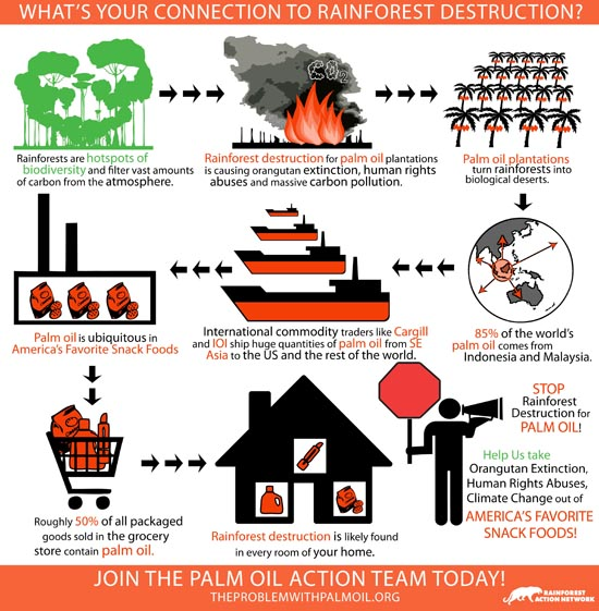 Palm Oil destruction graphic
