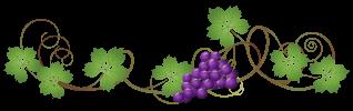 Vine decoration