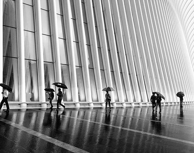Taken in October 2017 NYC  #ShotoniPhone #TheBlackandWhiteSeries #SPiCollective #ig_streetphotography #fineartphotography #streetphoto_bw #streetphotography #bnw_magazine #outofthephone #bnw_demand #theoculusnyc #oculus #newyorkcity