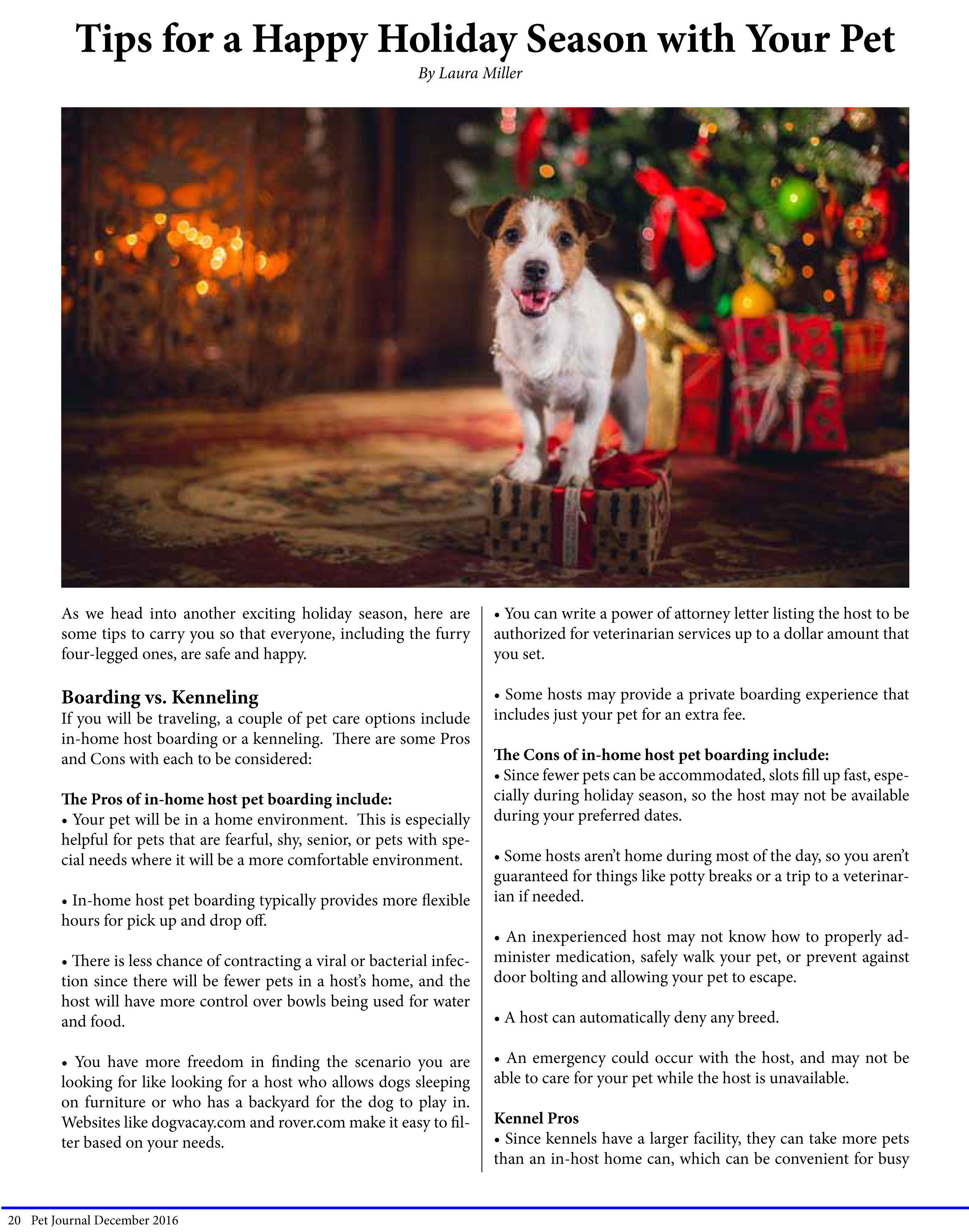Tips for a Happy Holiday Season with Your Pet