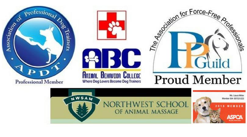 Creature Comfort Pet Services Laura Miller Certifications