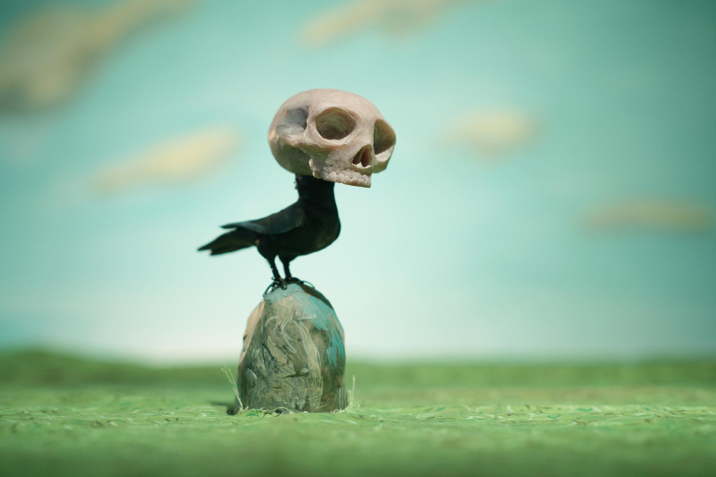RedNose_BirdBrain_FINAL-lores.jpg