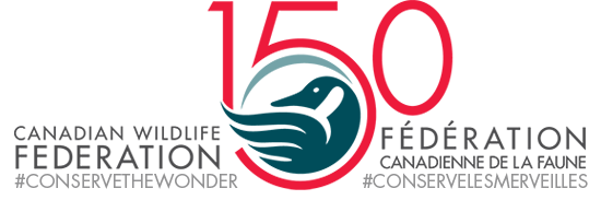 150-logo-bilingual.png